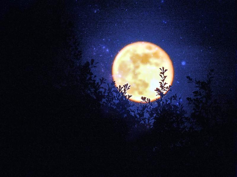 страшная ночная луна